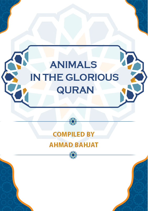 Animals-in-the-Glorious-Quran